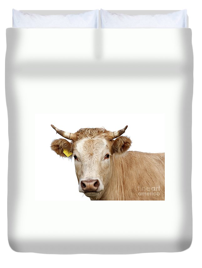 Cow Duvet Cover featuring the photograph Detail Of Cow Head by Michal Boubin