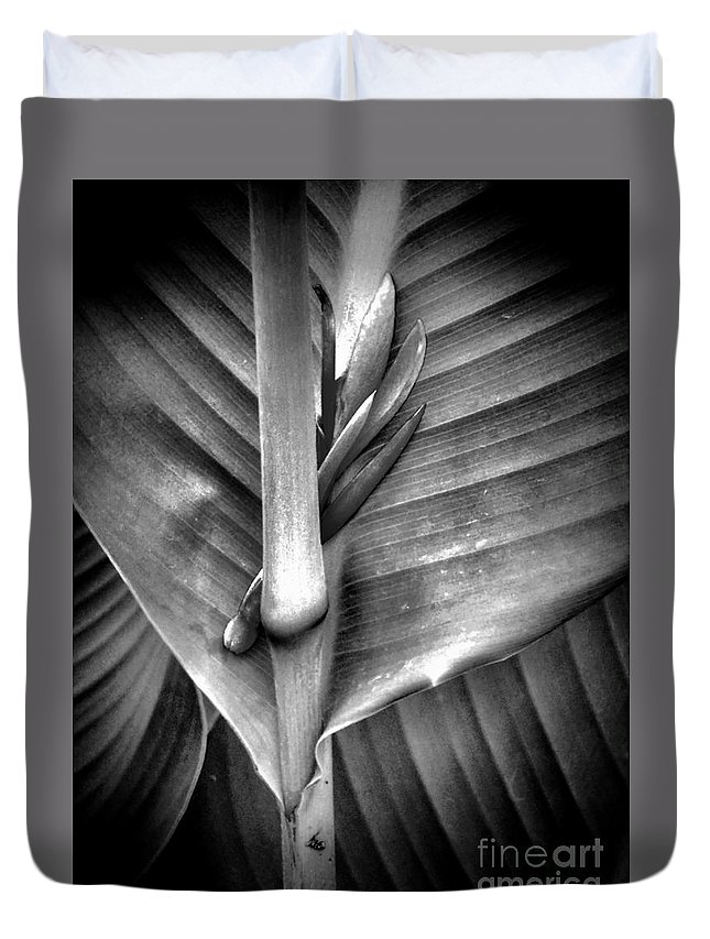 Newel Hunter Duvet Cover featuring the photograph Embraced by Newel Hunter