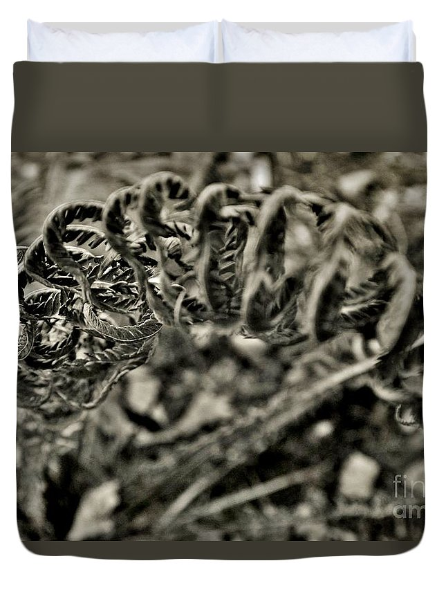 Duvet Cover featuring the photograph Fall 2013 by Chet B Simpson