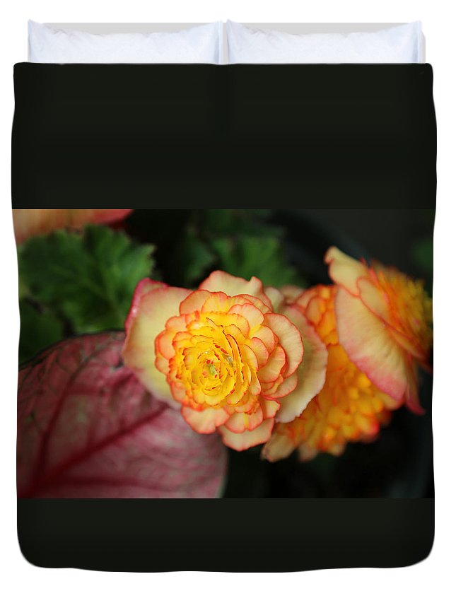 Flower Duvet Cover featuring the photograph Flower by Dwight Cook