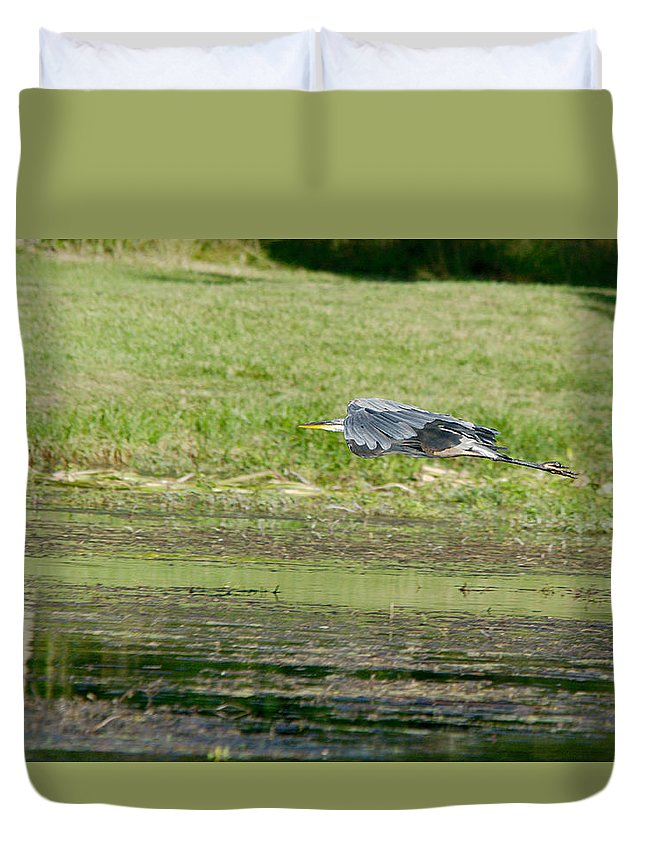 Roy Williams Duvet Cover featuring the photograph Great Blue Heron In Flight by Roy Williams