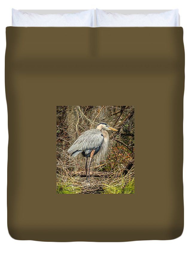 Florida Duvet Cover featuring the photograph Great Blue Heron by Jane Luxton