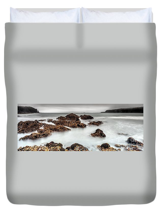 Nature Duvet Cover featuring the photograph Grey Morning by Steven Reed