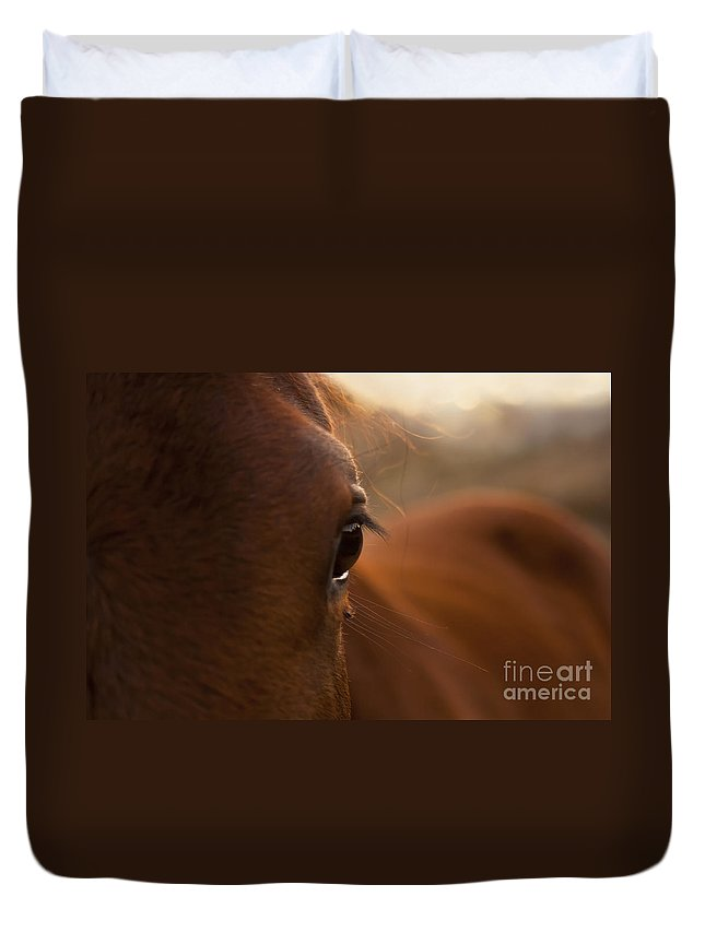 Australia Duvet Cover featuring the photograph Horse by Tim Hester