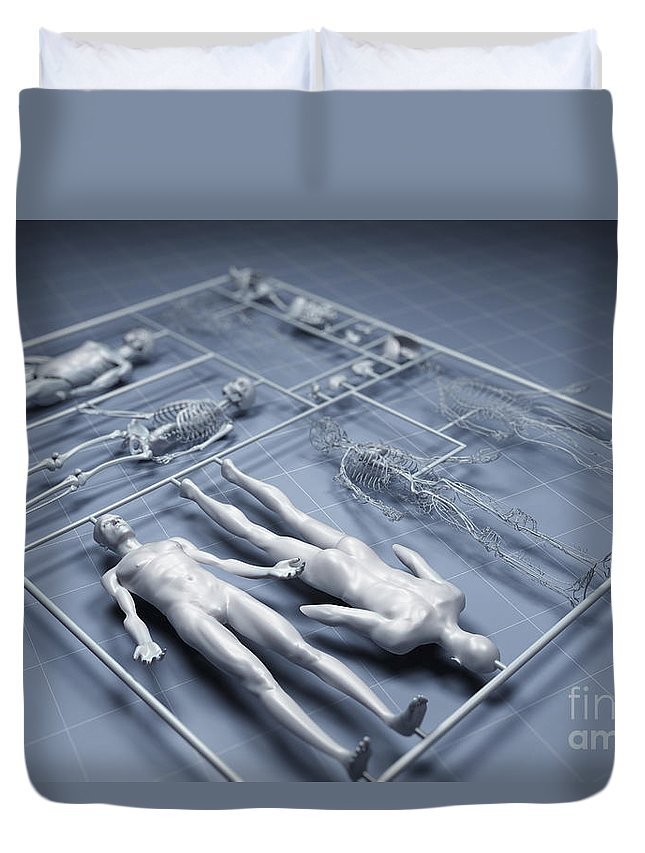 Gray Background Duvet Cover featuring the photograph Human Cloning by Science Picture Co