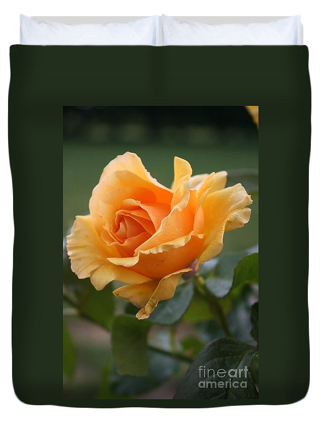 Rose Duvet Cover featuring the photograph In Full Bloom by Christiane Schulze Art And Photography