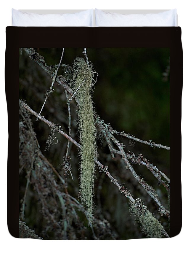 Finland Duvet Cover featuring the photograph Lichen by Jouko Lehto