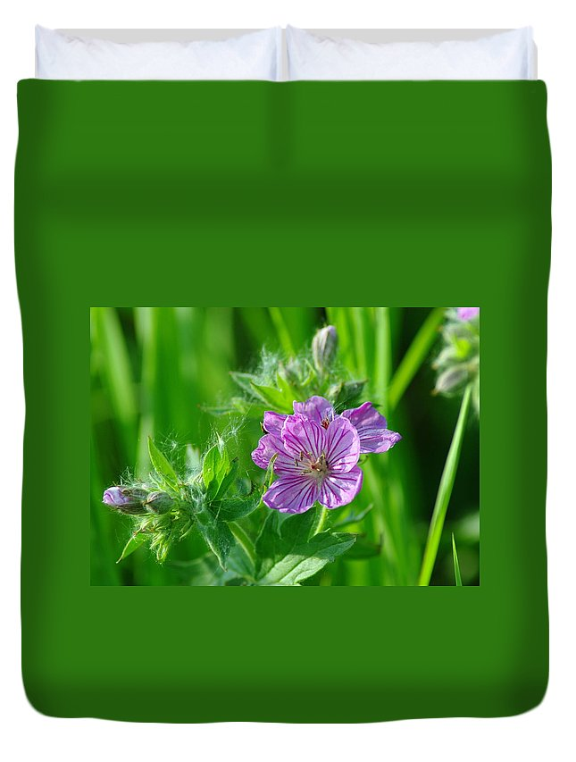 Blue Duvet Cover featuring the photograph Little Blue Flowers by Jeff Swan