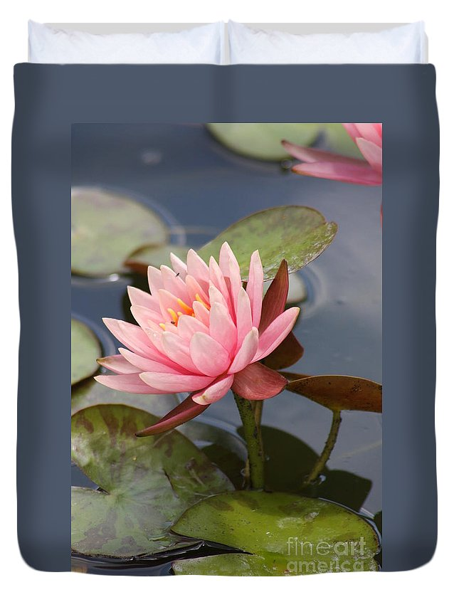 Waterlily Duvet Cover featuring the photograph Look At Me by Christiane Schulze Art And Photography