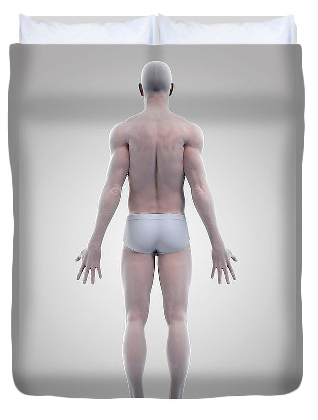 3d Visualization Duvet Cover featuring the photograph Male Figure by Science Picture Co