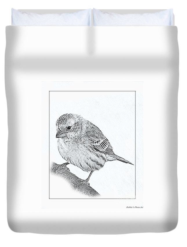 Nature Duvet Cover featuring the photograph Male House Finch Sketch by Debbie Portwood