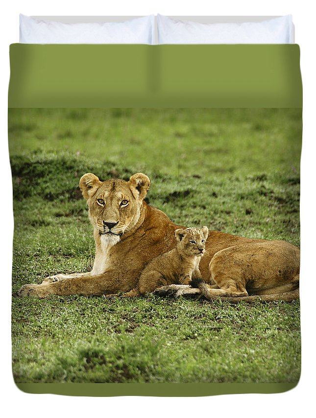 Lion Duvet Cover featuring the photograph Mama's Little Baby by Michele Burgess