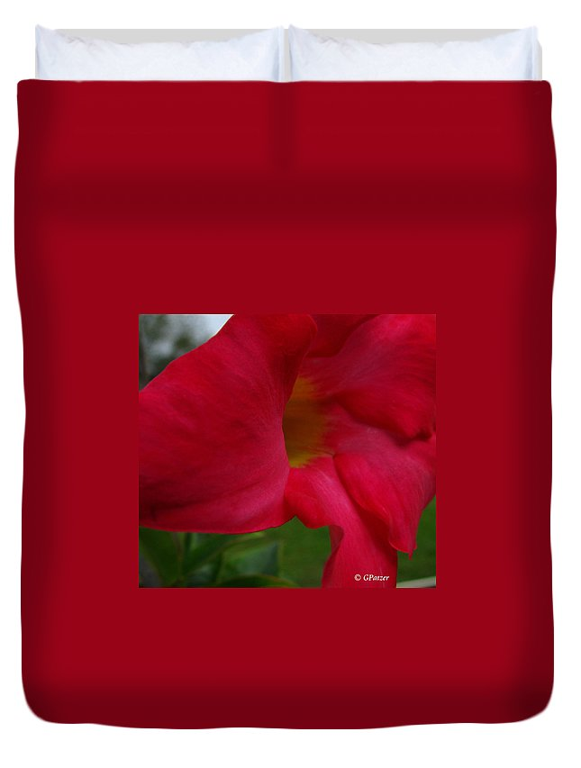 Patzer Duvet Cover featuring the photograph Mandeville by Greg Patzer