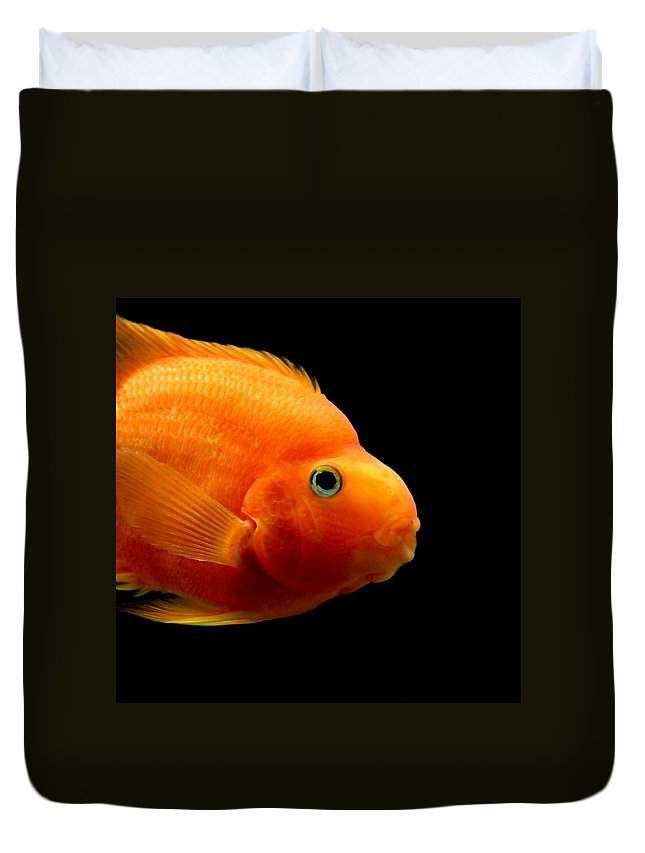 Fish Duvet Cover featuring the photograph Parrot Fish by Heike Hultsch