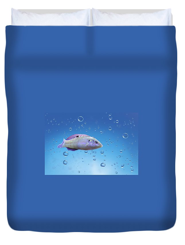 Fish Duvet Cover featuring the photograph Perch by Heike Hultsch