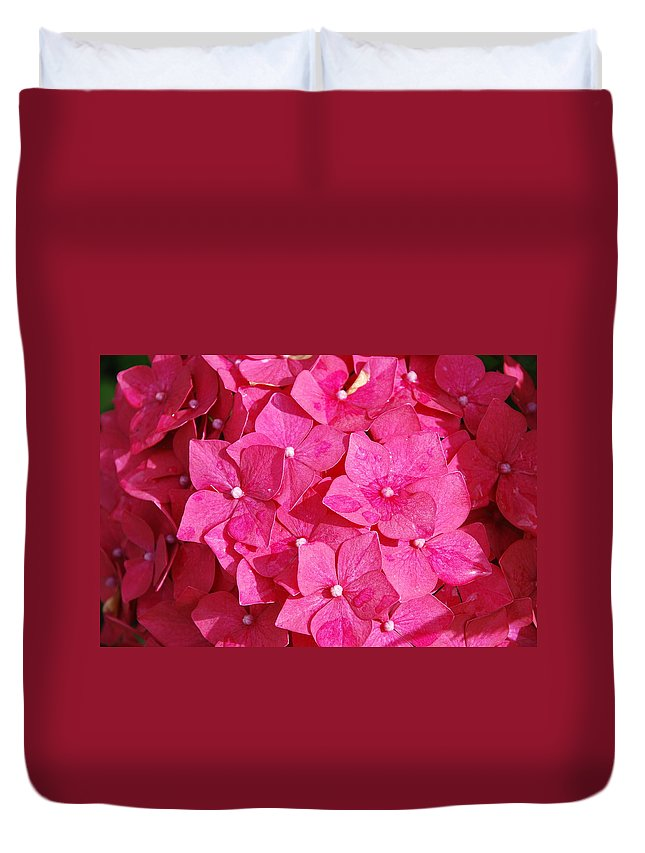 Hydrangea Duvet Cover featuring the photograph Pretty In Pink by Charlie and Norma Brock