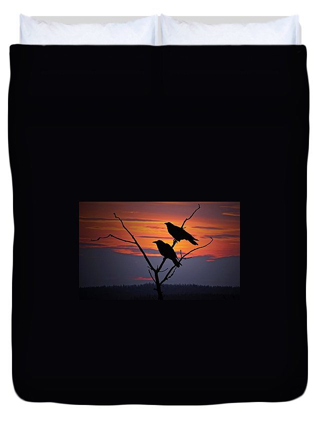 Raven Duvet Cover featuring the photograph 2 Ravens by Ron Day
