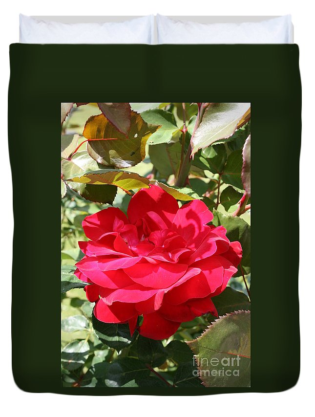 Red Rose Duvet Cover featuring the photograph Red Red Rose by Christiane Schulze Art And Photography