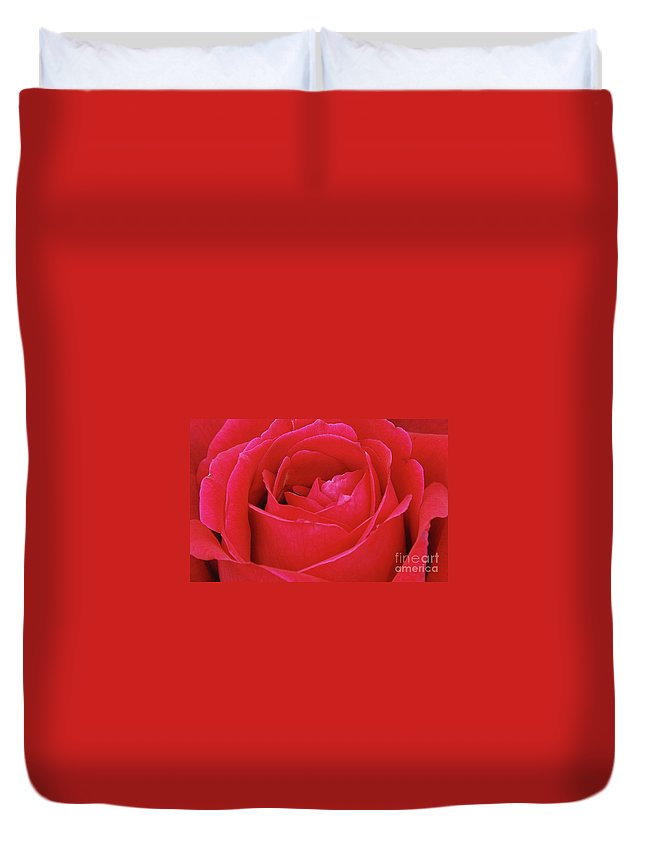 Red Duvet Cover featuring the photograph Red Rose by Allen Beatty
