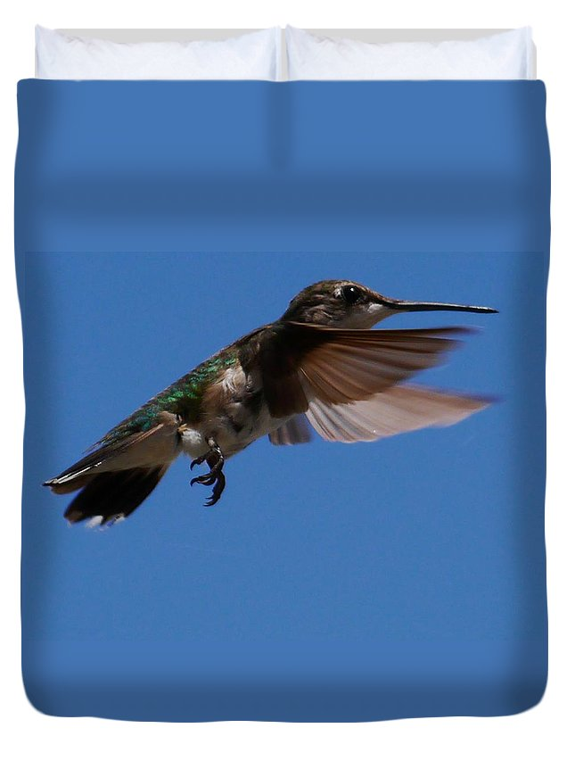 Ruby-throated Duvet Cover featuring the photograph Ruby-throated Hummingbird by Anthony Walker Sr