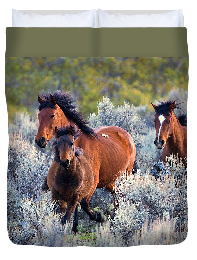 Wild Horses Duvet Cover featuring the photograph Running Free by Mike Dawson