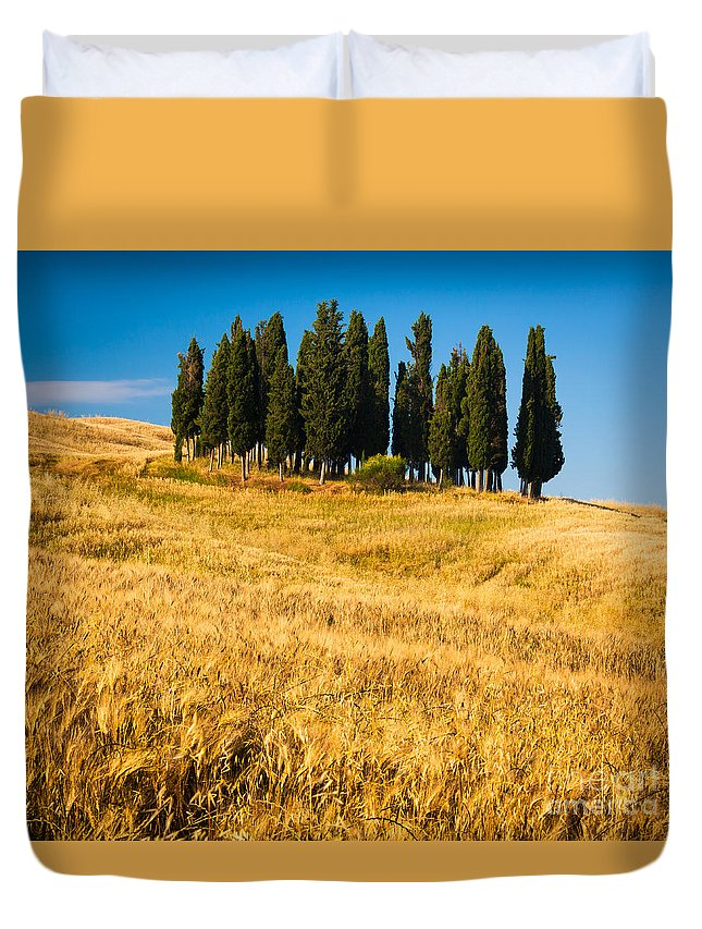 Europe Duvet Cover featuring the photograph San Quirico D'orcia by Inge Johnsson