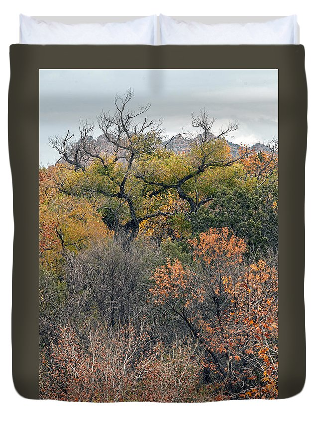 Fall Color Duvet Cover featuring the photograph Sedona Fall Color by Tam Ryan