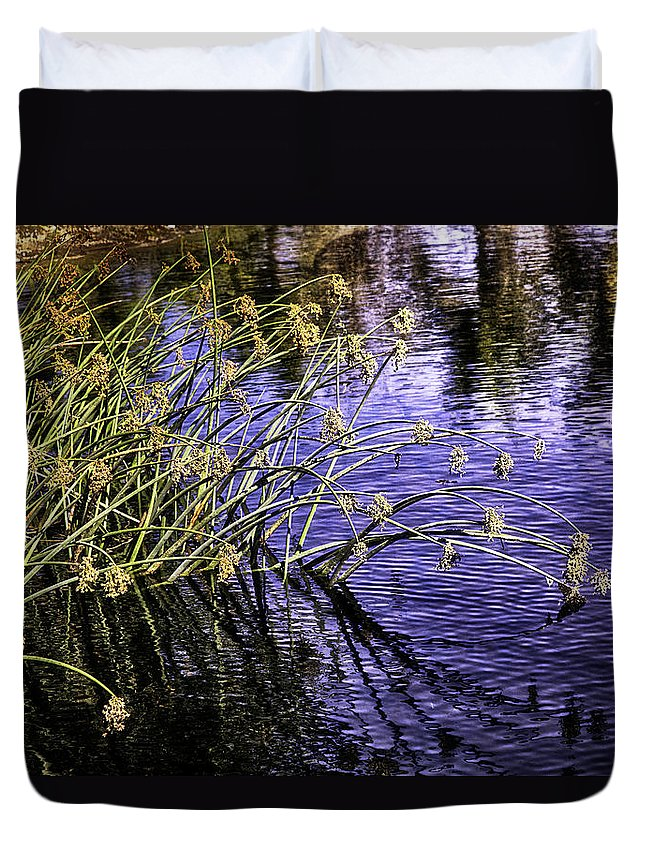 Water Duvet Cover featuring the photograph Serenity by Madeline Ellis