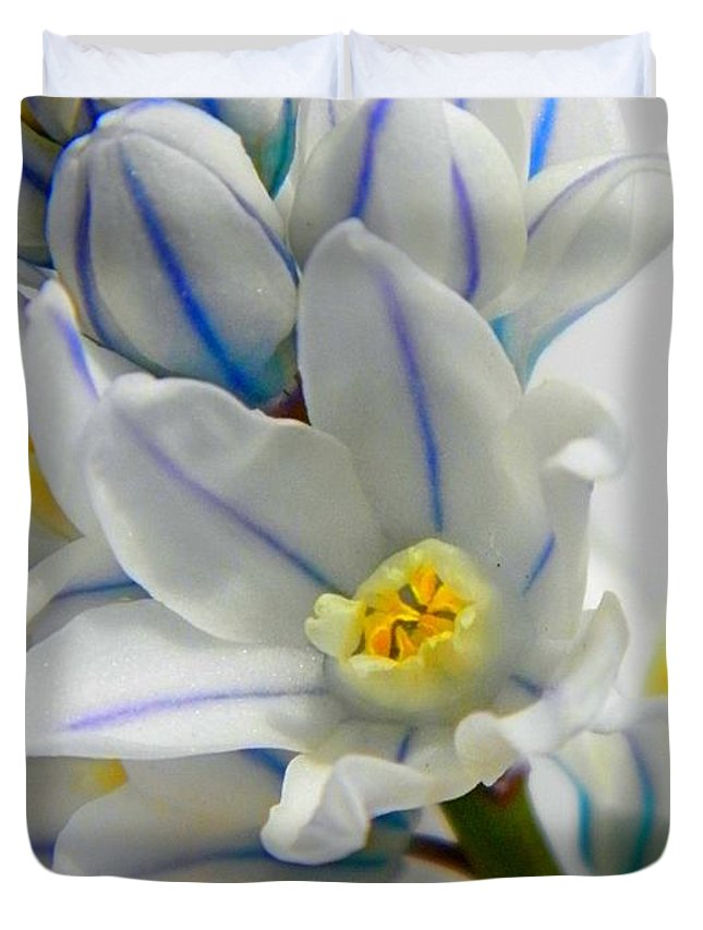 Squill Duvet Cover featuring the photograph Siberian Squill by Chris Berry
