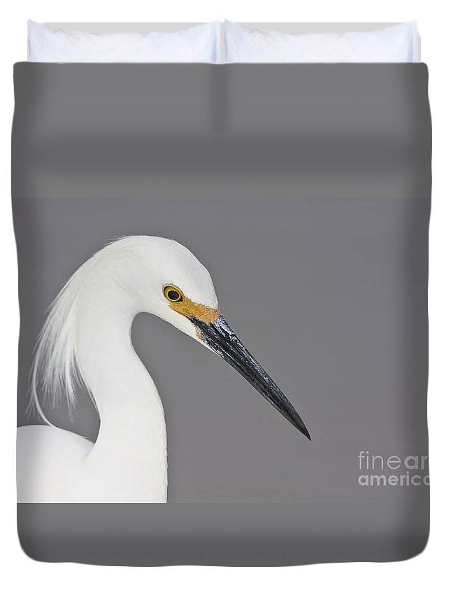 Egret Duvet Cover featuring the photograph Snowy Portrait by Bryan Keil