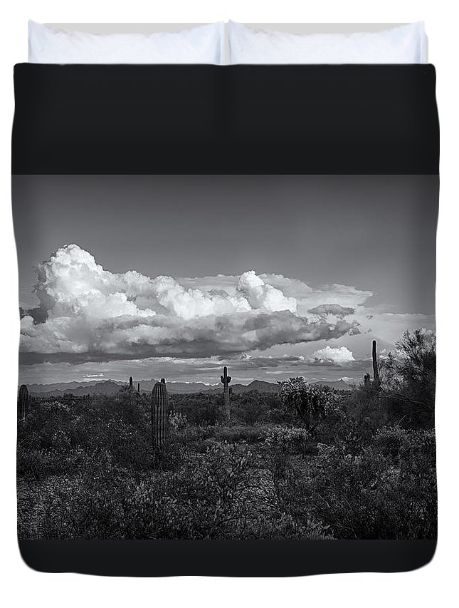 Arizona Duvet Cover featuring the photograph Sonoran Desert In Black And White by Saija Lehtonen