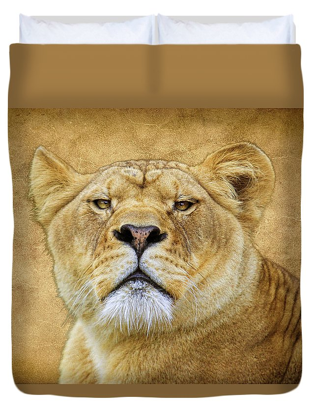 Lion Duvet Cover featuring the photograph Stare Down by Steve McKinzie