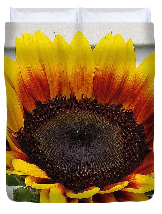 Mccombie Duvet Cover featuring the painting Sunflower Named The Joker by J McCombie