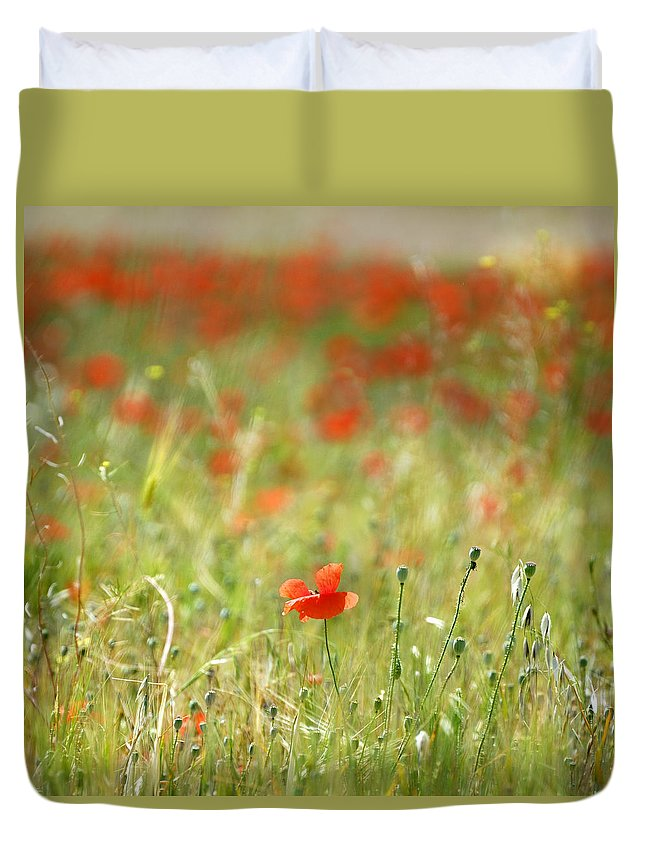 Landscape Duvet Cover featuring the photograph The First Poppy Of The Field by Guido Montanes Castillo