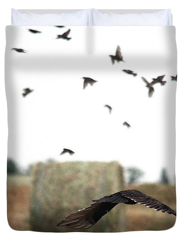Mccombie Duvet Cover featuring the painting Turkey Vulture Takes Flight by J McCombie