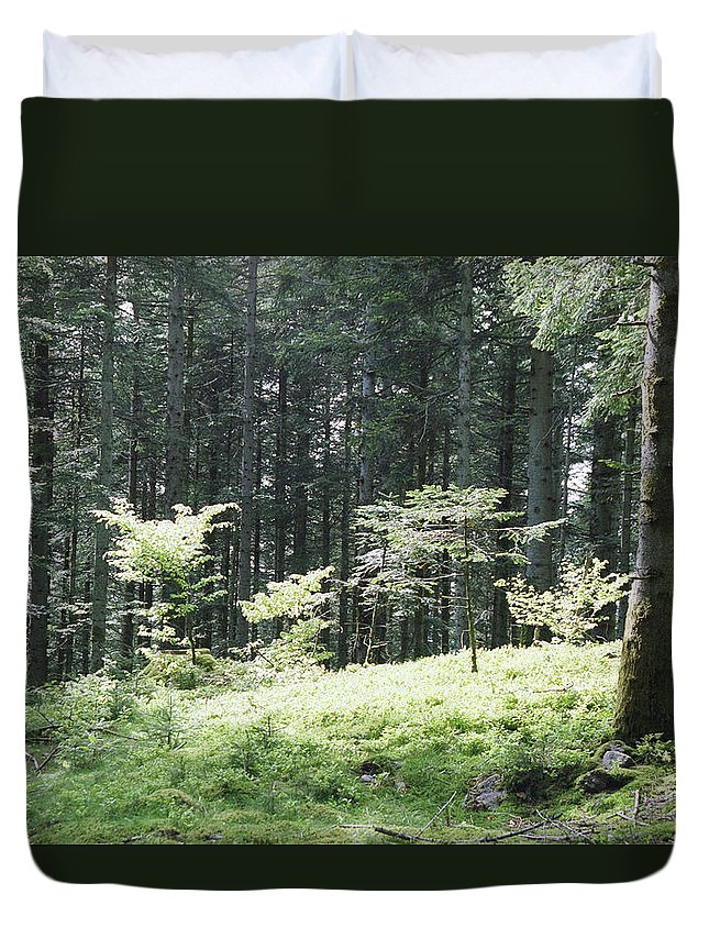Fall Duvet Cover featuring the photograph Underwood by Patrick Kessler