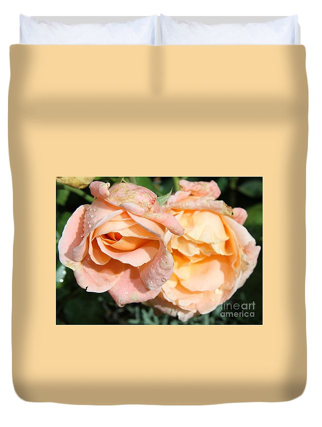 Pink Rose Duvet Cover featuring the photograph Wet Beauty by Christiane Schulze Art And Photography