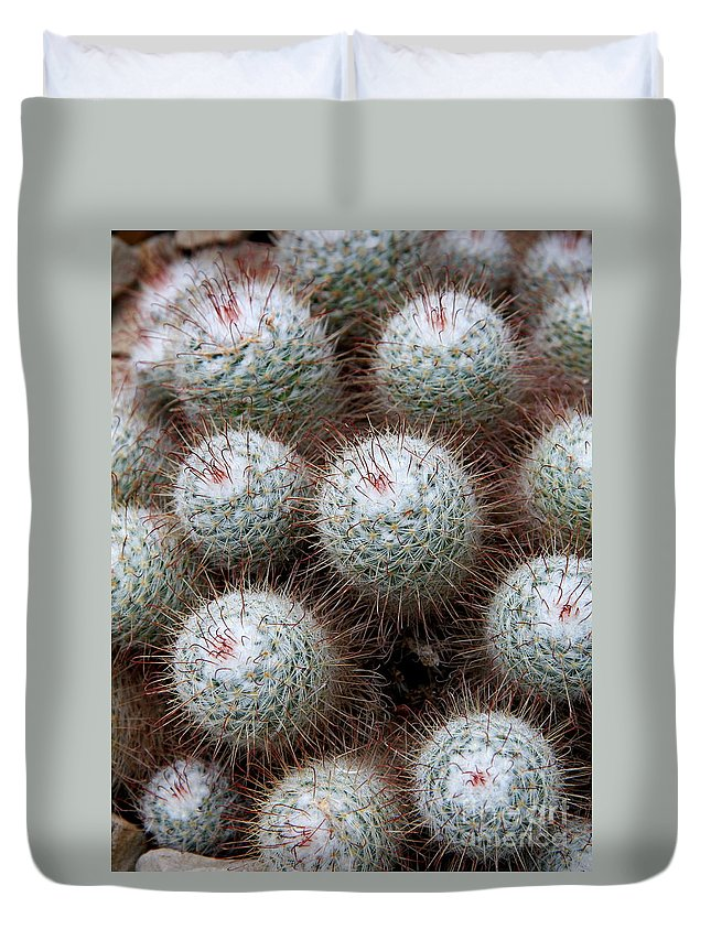 Cactus Duvet Cover featuring the photograph White Bearded by Christiane Schulze Art And Photography