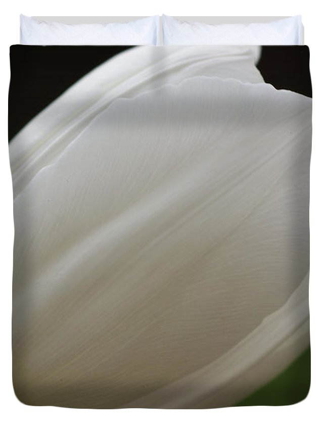 White Duvet Cover featuring the photograph White Tulip 1 by Carol Lynch