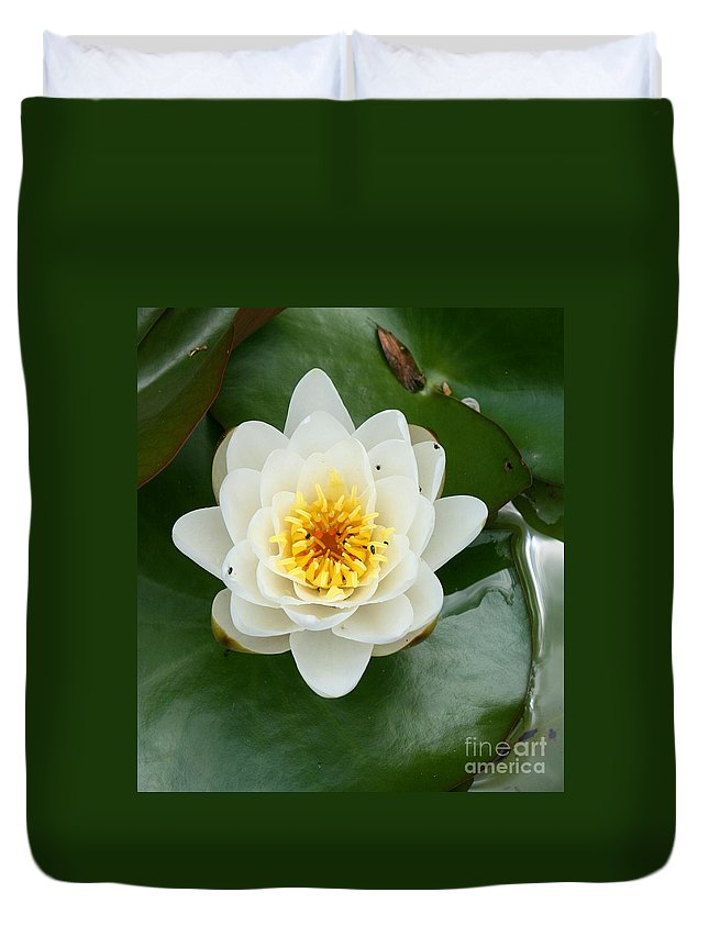 Waterlily Duvet Cover featuring the photograph White Waterlily by Christiane Schulze Art And Photography