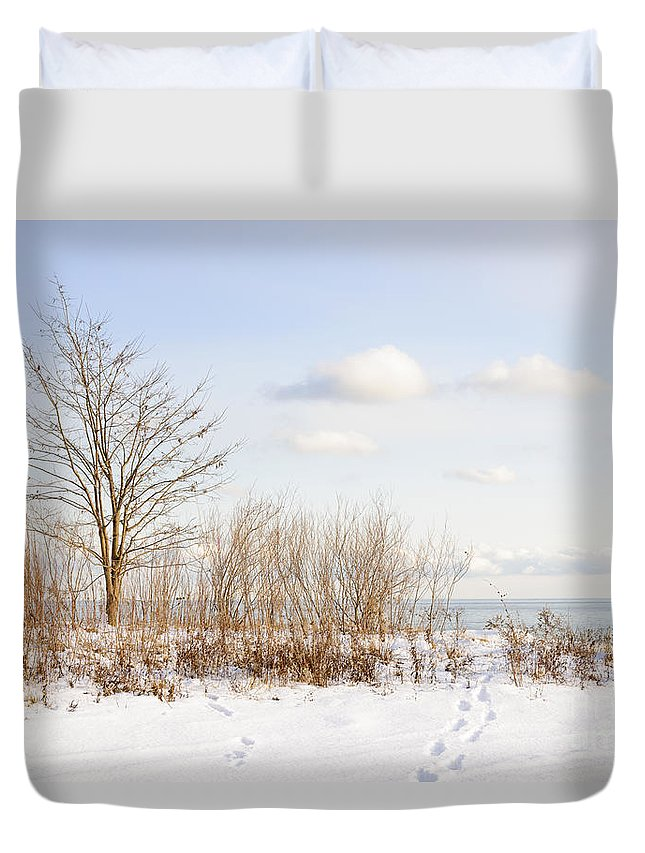 Tree Duvet Cover featuring the photograph Winter Shore Of Lake Ontario by Elena Elisseeva
