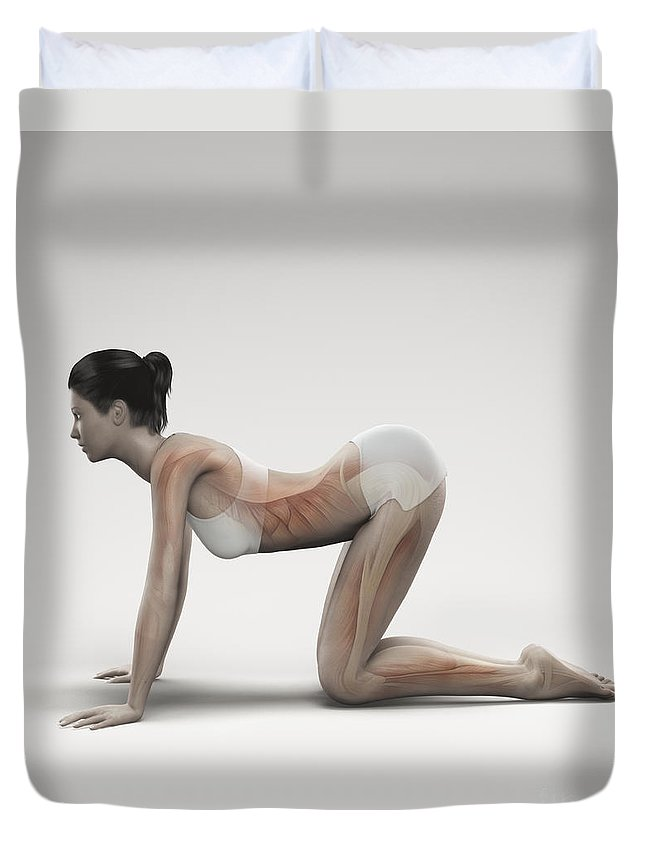 Transparent Duvet Cover featuring the photograph Yoga Cow Pose by Science Picture Co
