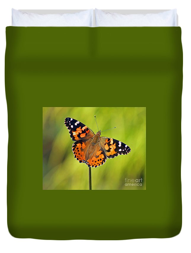 American Duvet Cover featuring the photograph American Painted Lady Butterfly by Karen Adams