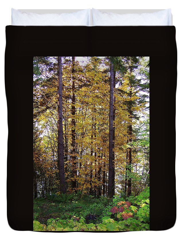 Original Duvet Cover featuring the photograph Autumn 5 by J D Owen