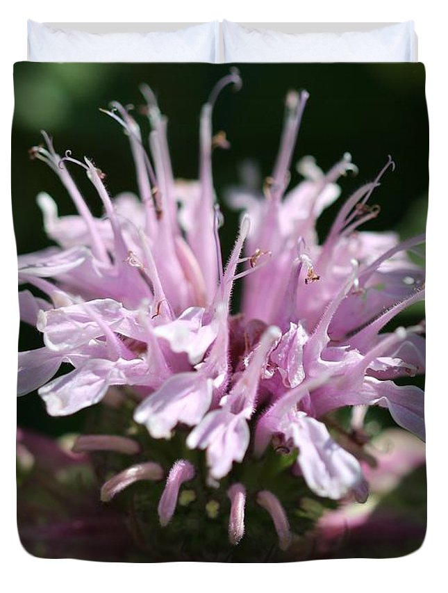 Bee Balm Duvet Cover featuring the photograph Bee Balm From The Panorama Mix by J McCombie