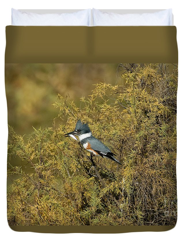 Vertical Duvet Cover featuring the photograph Belted Kingfisher With Fish by Anthony Mercieca