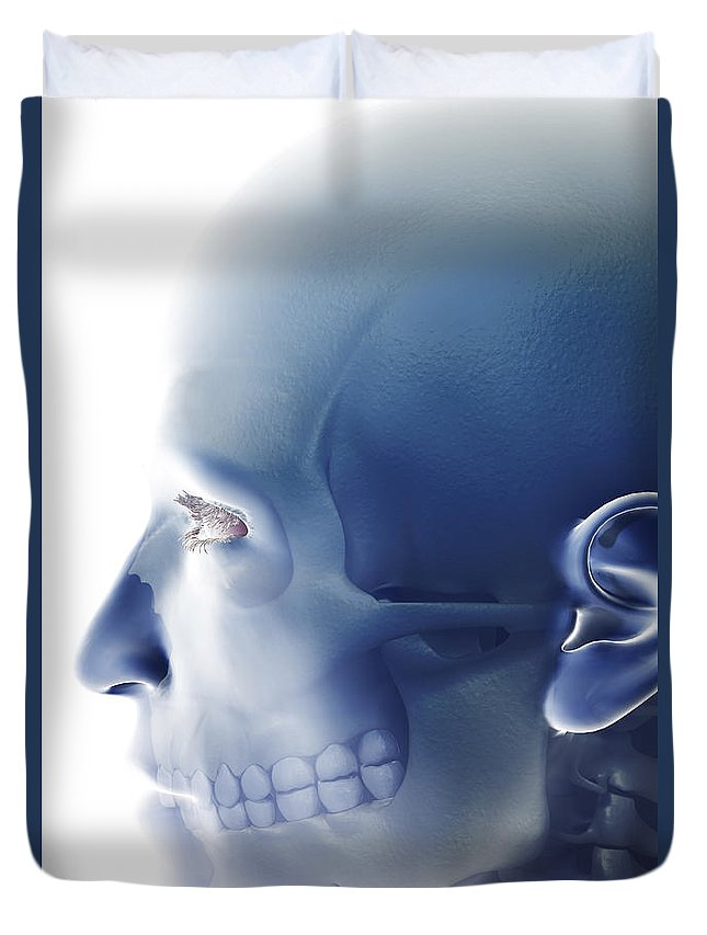 Eye Socket Duvet Cover featuring the photograph Bones Of The Face by Science Picture Co