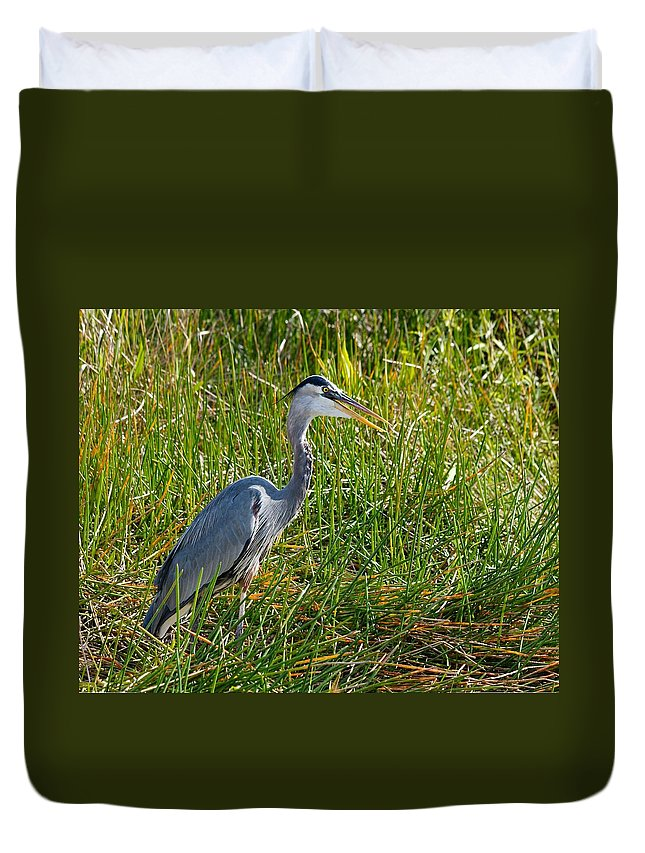 Heron Duvet Cover featuring the photograph Great Blue Heron by Rudy Umans