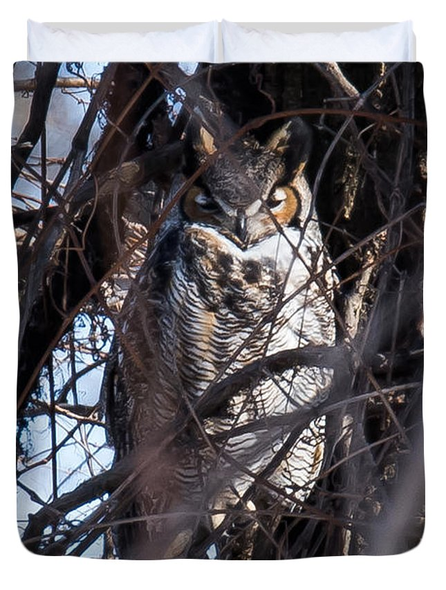 Great Horned Owl Duvet Cover featuring the photograph Great Horned Owl by Ronald Grogan