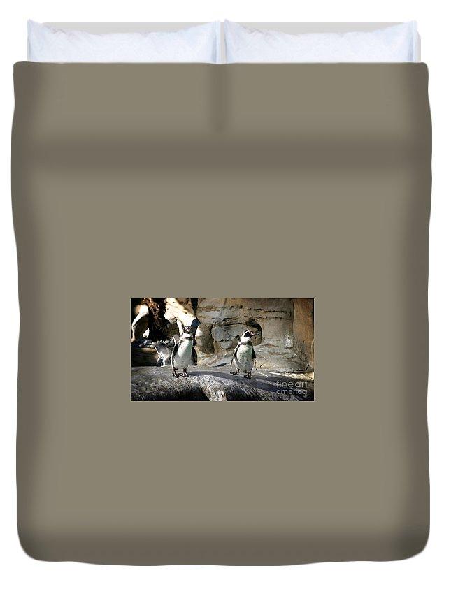 White Duvet Cover featuring the photograph Humboldt Penguin by Henrik Lehnerer
